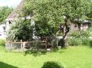 Apfelbaum mit Hasenstall